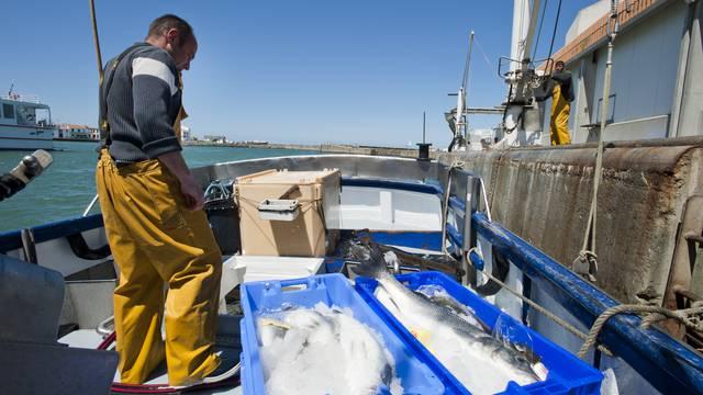 Fischerei und Landwirtschaft