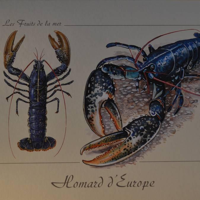 •Postkarte  1 €